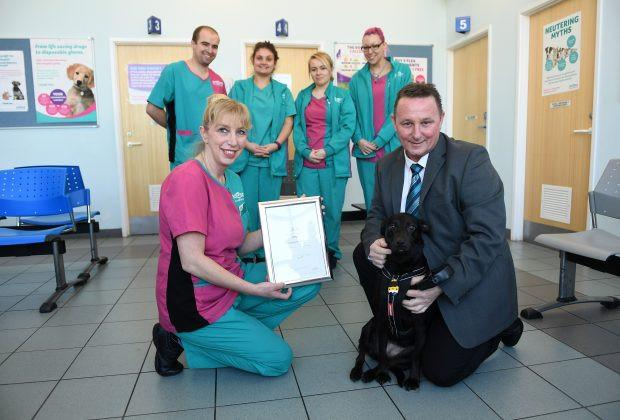 Bella the Labrador scoops up PDSA Commendation