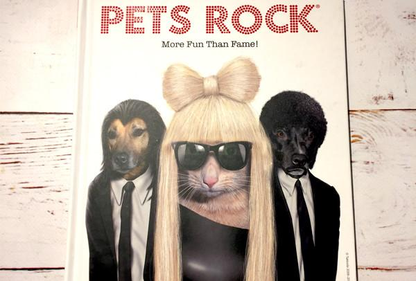#SUMMERREADS - WIN a copy of Pets Rock - 07/07/2017