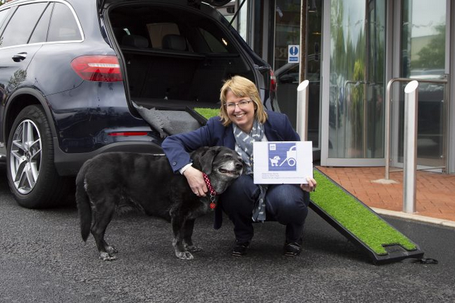 Pets at Home offers Blue Badges for disabled dogs at head office