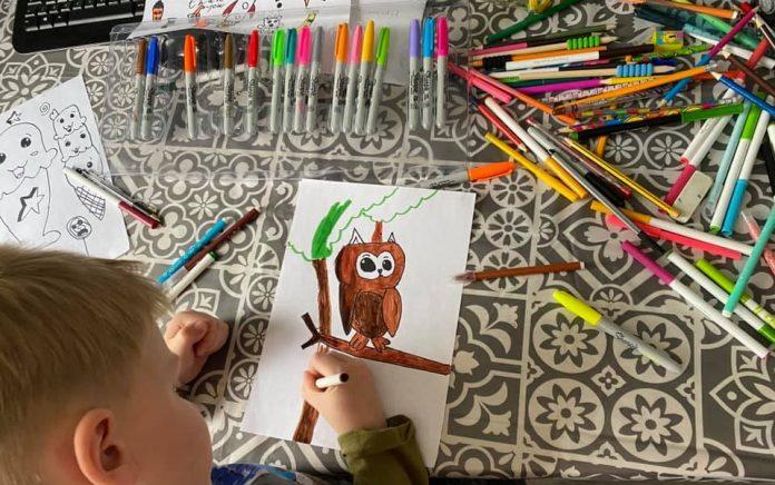 Eight year old boy's art raises funds for local rescue