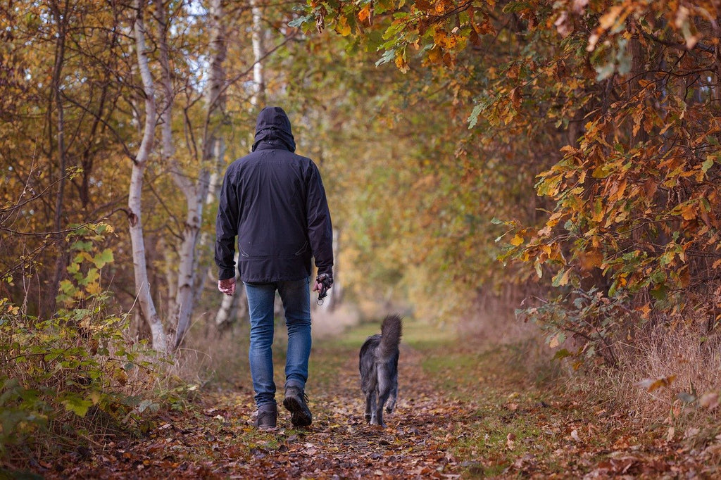 Fighting the Alabama Rot