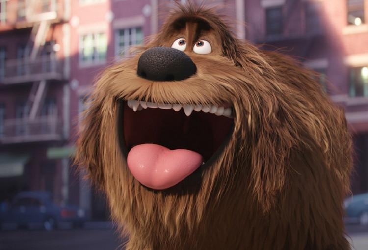 Review: The Secret Life of Pets