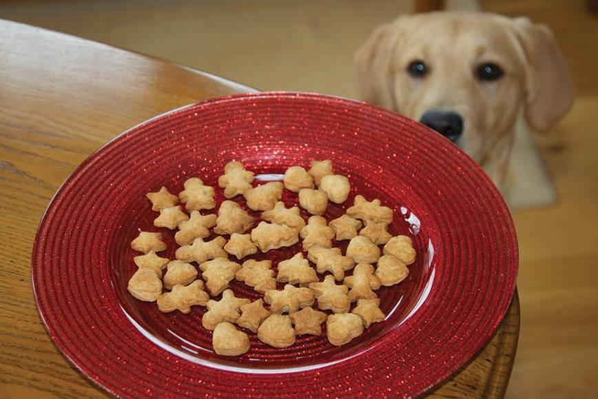 How To Make Christmas Ginger Biscuits for Your Dog