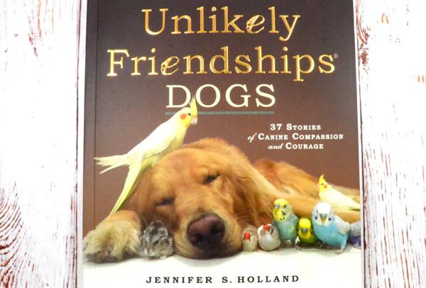#WINITWEDNESDAY - WIN a copy of Unlikely Friendships by Jennifer S. Holland - 5/10/16