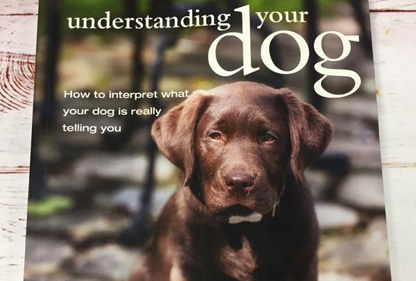 #WINITWEDNESDAY - WIN a copy of Understanding Your Dog by David Alderton - 17/05/2017