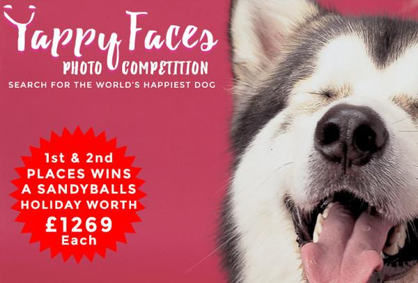 Yappy Faces Photo Competition - 10/06/2016 - 11/07/2016