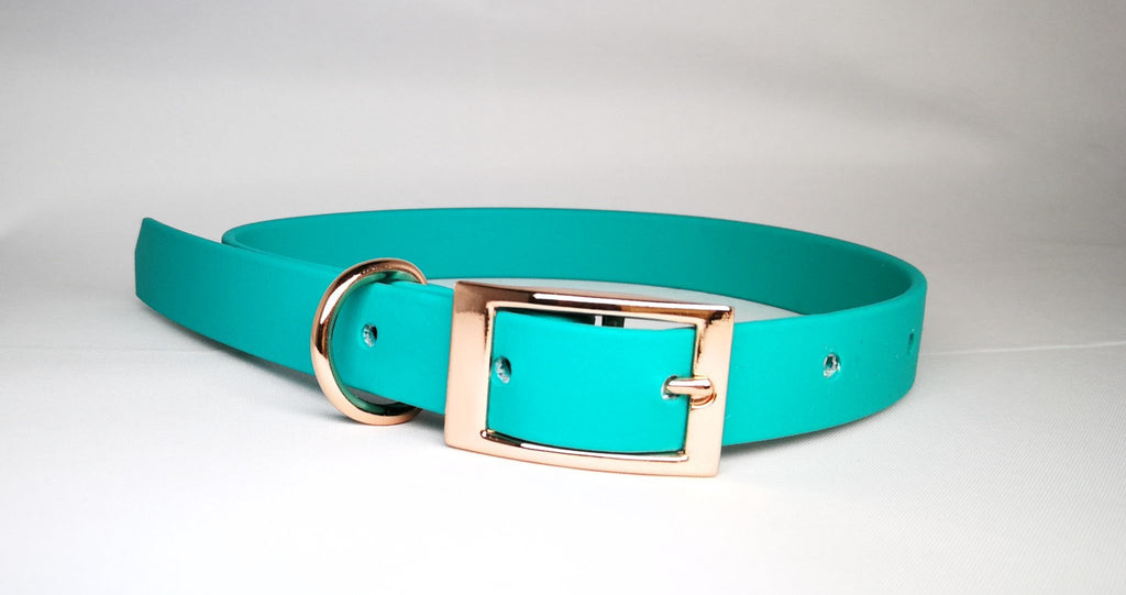 Pet Pooch Boutique Teal Biothane Dog Collar