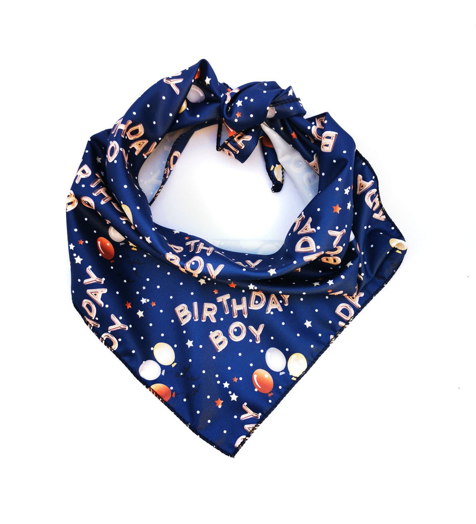 Pet Pooch Boutique Birthday Boy Dog Bandana