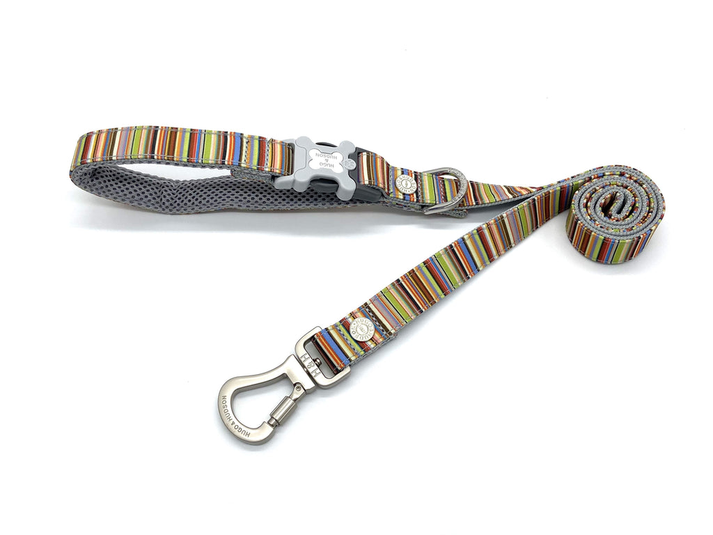 Hugo & Hudson Multi Coloured Stripe Lead