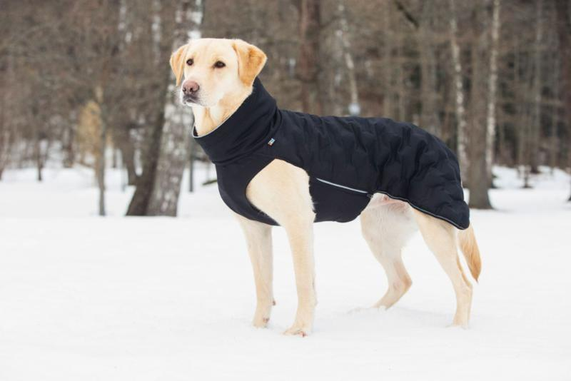 Rukka Flow Dog Jacket In Black