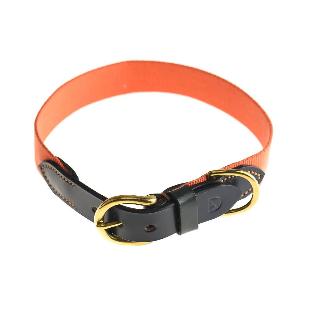 Doggie Apparel Leather Dog Collar - Arlington