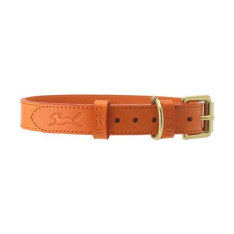 Lish London Coopers Tangerine Orange Italian Leather Dog Collar
