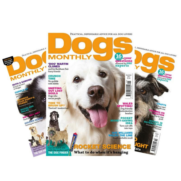 Dogs Monthly Magazine Subscription (UK only) - PurrfectlyYappy