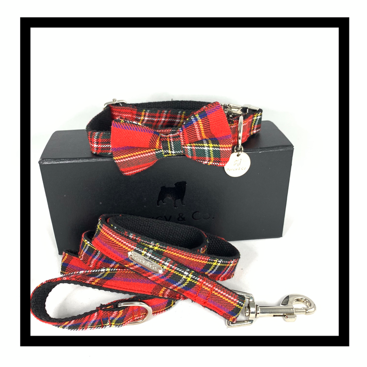 The Edinburgh Bow Tie Collar and Lead Set