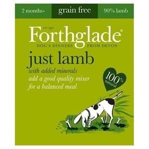 Forthglade Just Lamb Grain Free Dog Food 18 x 395g