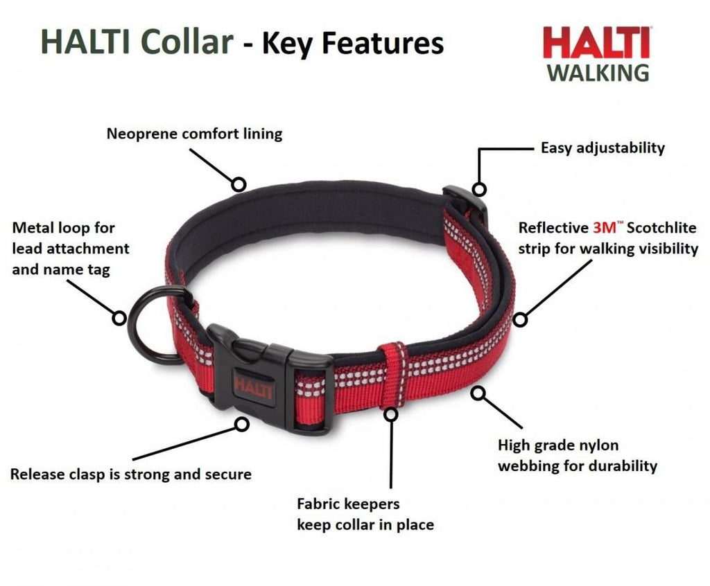 HALTI Dog Collar in Blue - PurrfectlyYappy