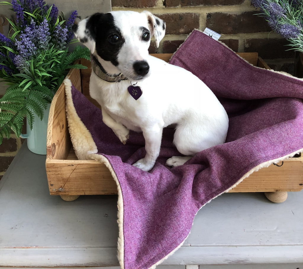 Minkeys Tweed Luxury Pet Blanket in Juno