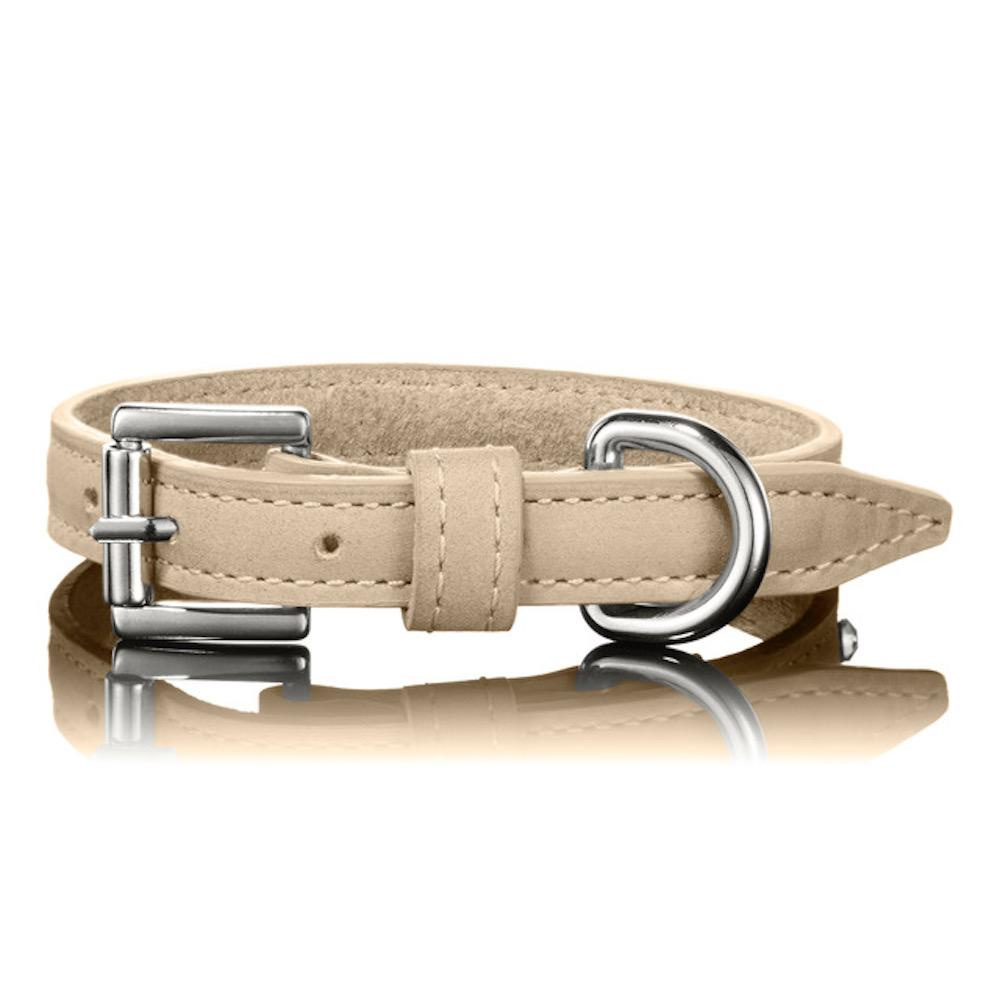 Paws with Opulence Tan Leather Dog Collar - PurrfectlyYappy