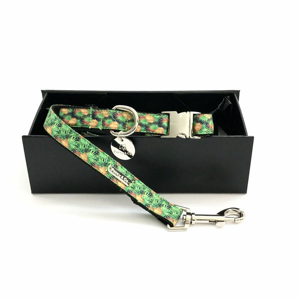 Percy & Co. Dog Collar & Lead Set in The Alderley
