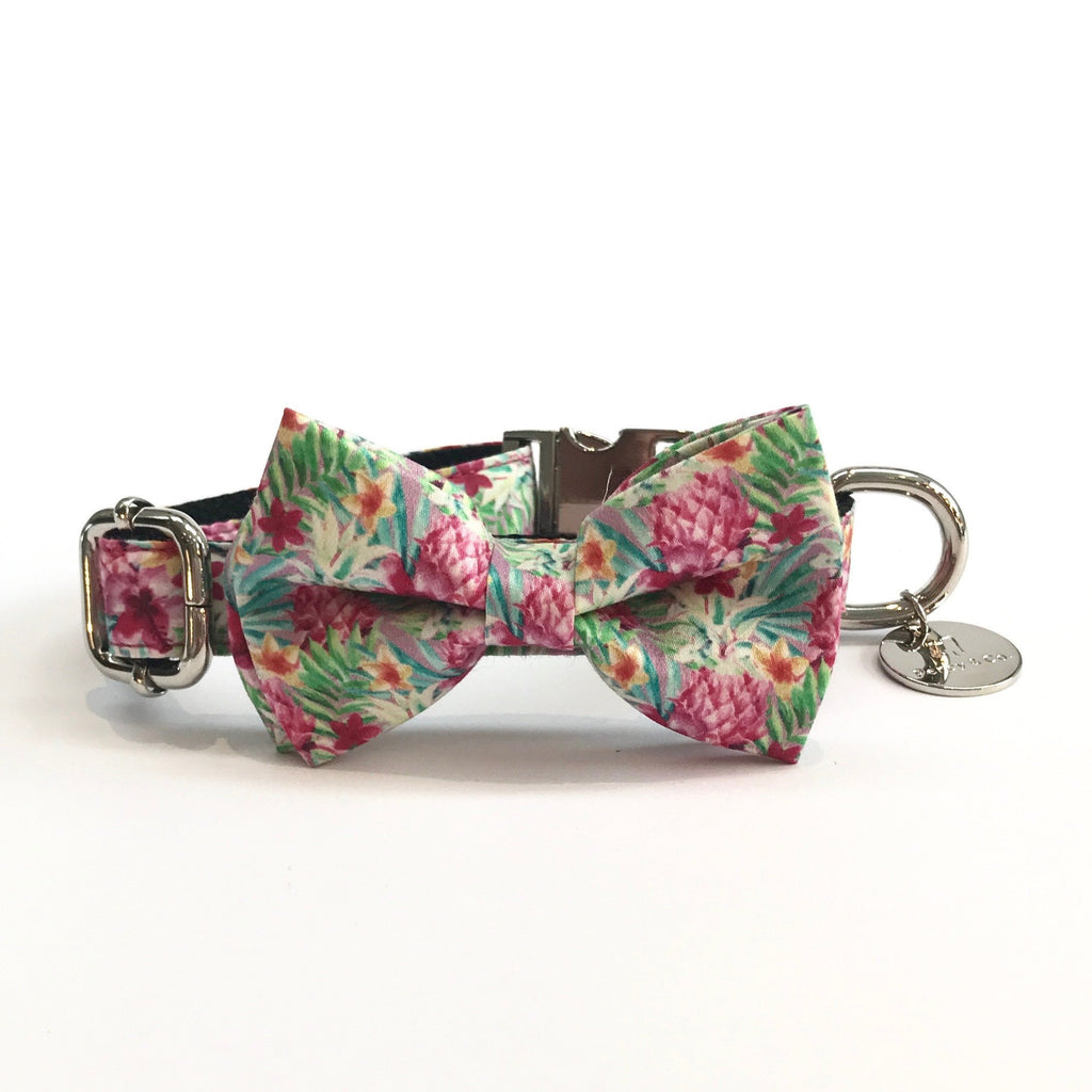 Percy & Co. Dog Collar Bow Tie in The Clifton - PurrfectlyYappy