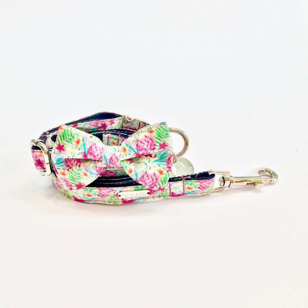 Percy & Co. Bow Tie Collar & Lead Set in The Clifton - PurrfectlyYappy