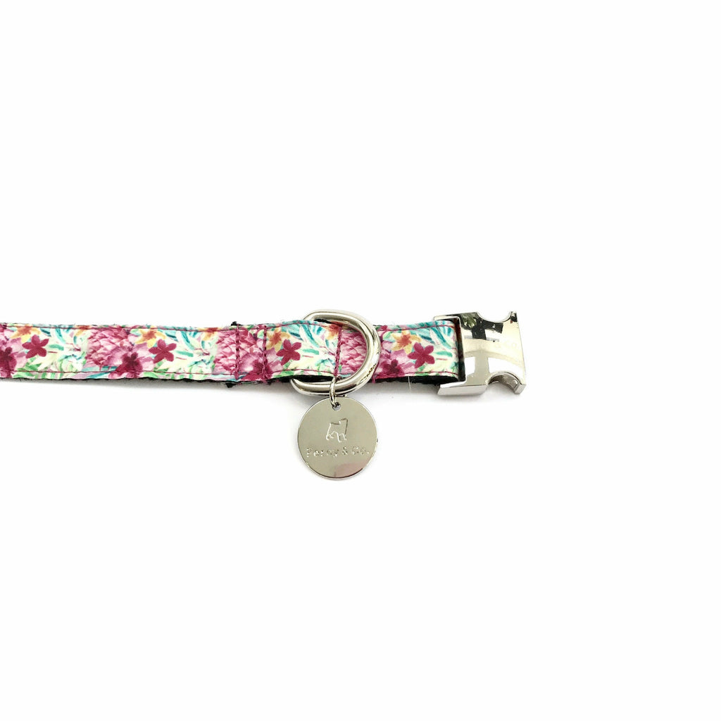 Percy & Co. Dog Collar & Lead Set in The Clifton - PurrfectlyYappy