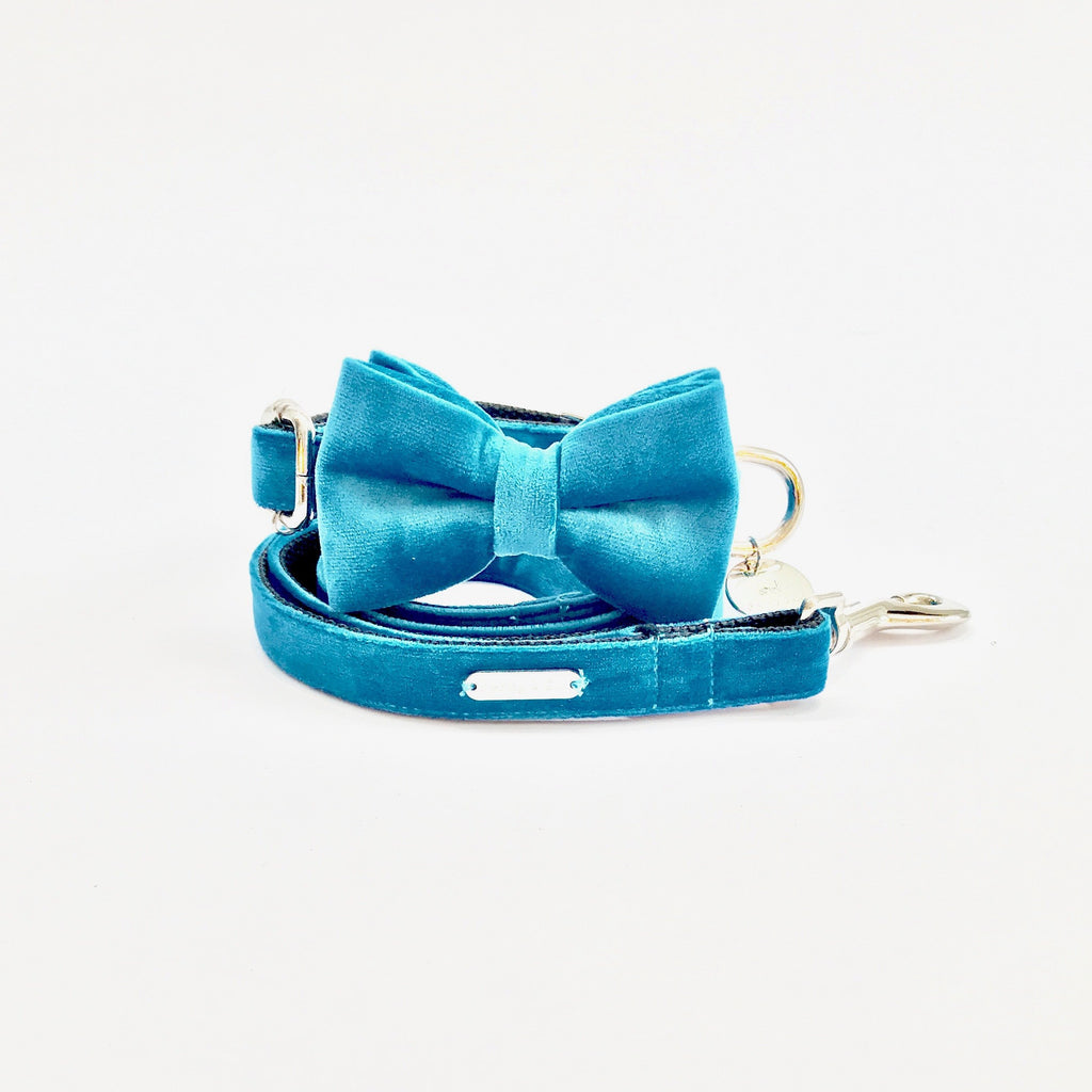 Percy & Co. Bow Tie Collar & Lead Set in Constantine - PurrfectlyYappy
