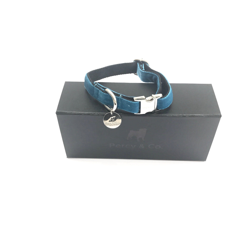 Percy & Co. Dog Collar in The Constantine - PurrfectlyYappy