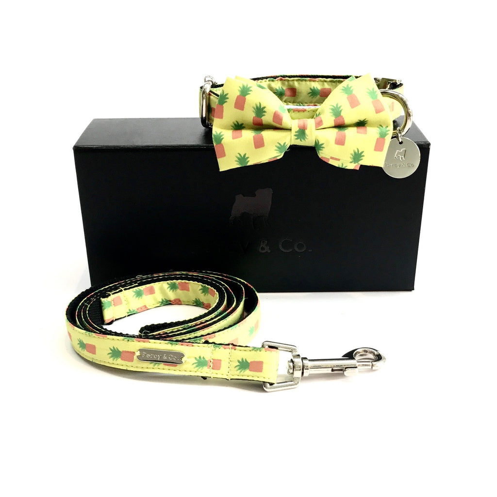 Percy & Co. Bow Tie Collar & Lead Set in The Soho - PurrfectlyYappy