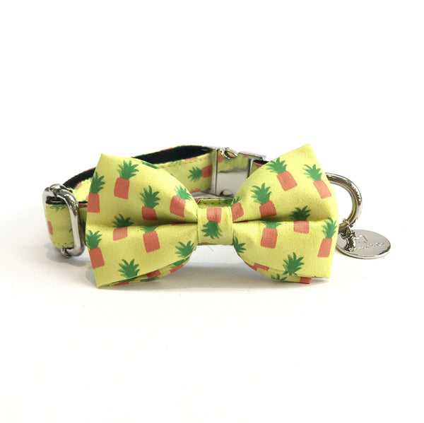Percy & Co. Dog Collar Bow Tie in The Soho