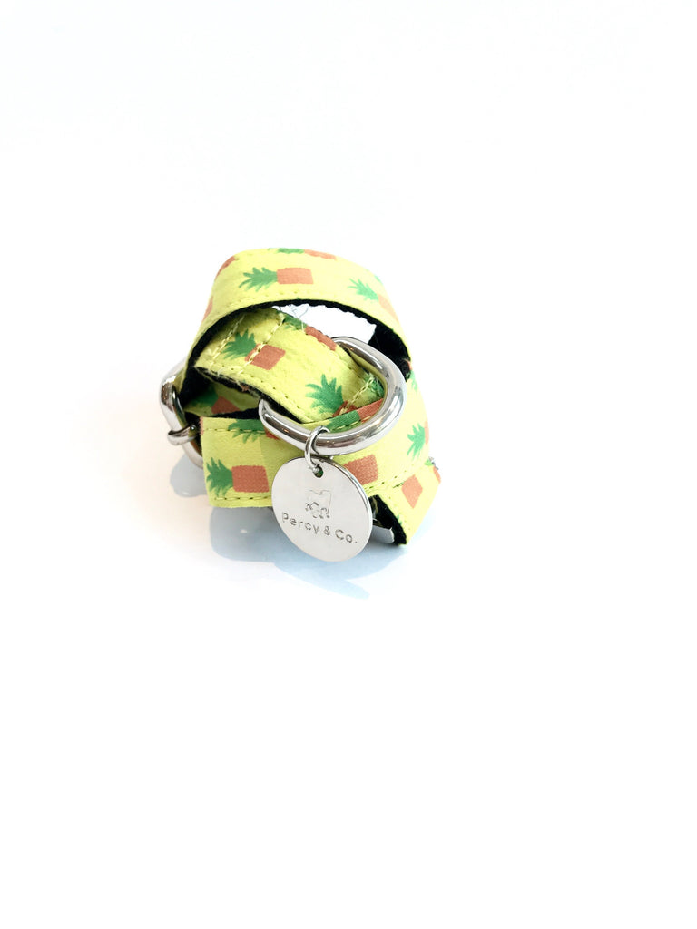 Percy & Co. Dog Collar in The Soho - PurrfectlyYappy
