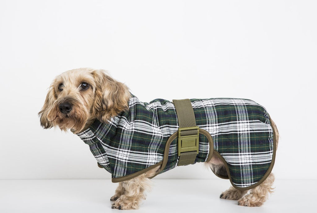 Siccaro Splash Dog Drying Coat