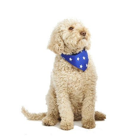 Pet Pooch Boutique Bandana in Blue Star - PurrfectlyYappy