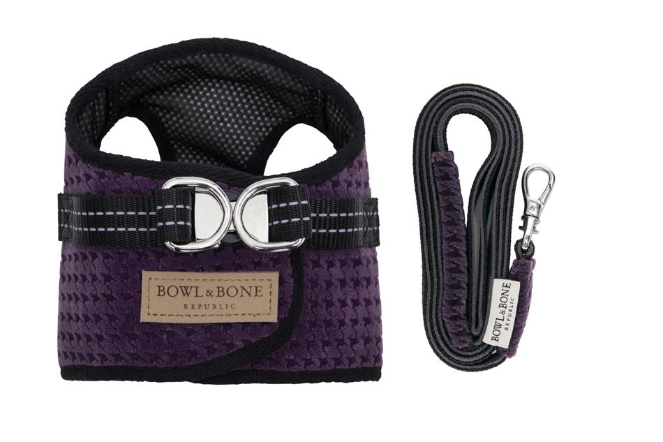 Bowl & Bone Republic Soho Harness in Purple