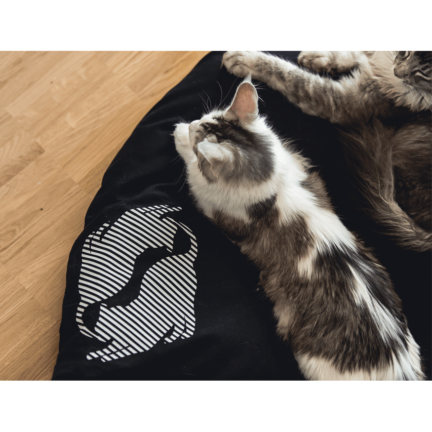 MyKotty Emi Cat Bed In Black