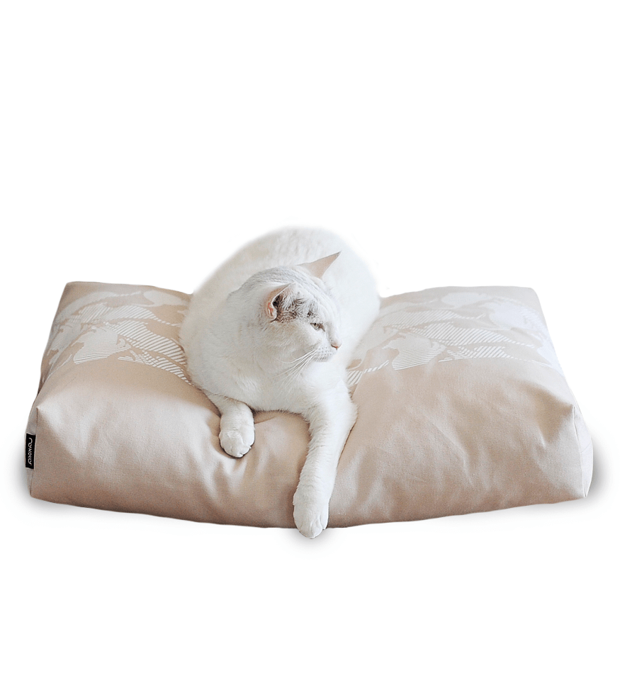 MyKotty Padi Pillow Cat Bed In Beige