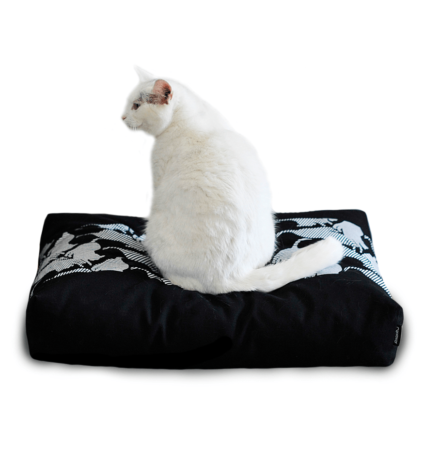 MyKotty Padi Pillow Cat Bed In Black