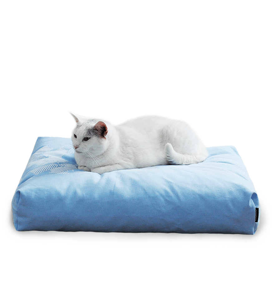 MyKotty Padi Pillow Cat Bed In Blue