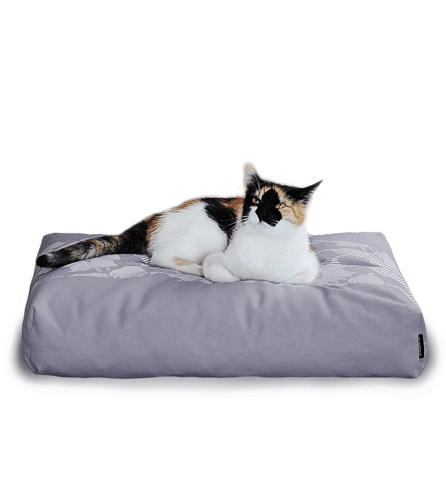 MyKotty Padi Pillow Cat Bed In Grey