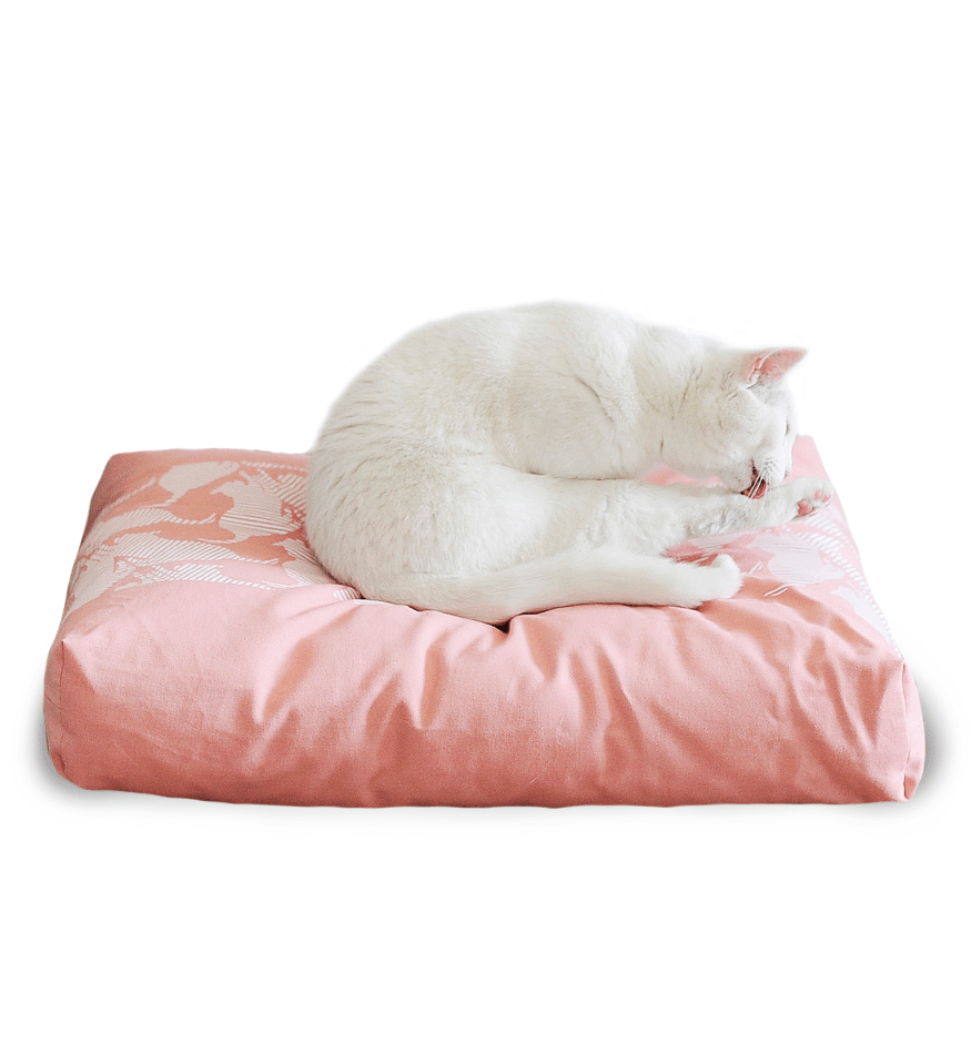 MyKotty Padi Pillow Cat Bed In Rose
