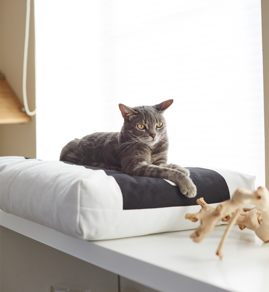 MyKotty Padi Pillow Cat Bed In White