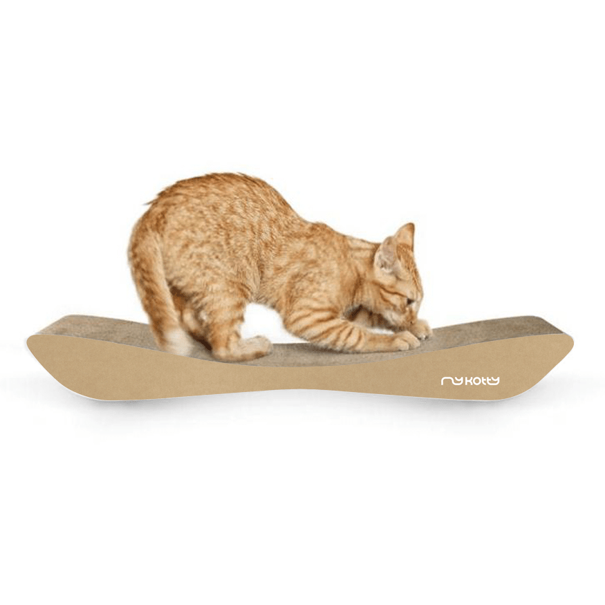 MyKotty Tobi Cat Scratcher In Brown