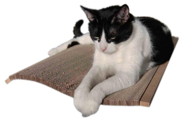 Catroom Neo 1 Cat Scratcher and Bed - PurrfectlyYappy