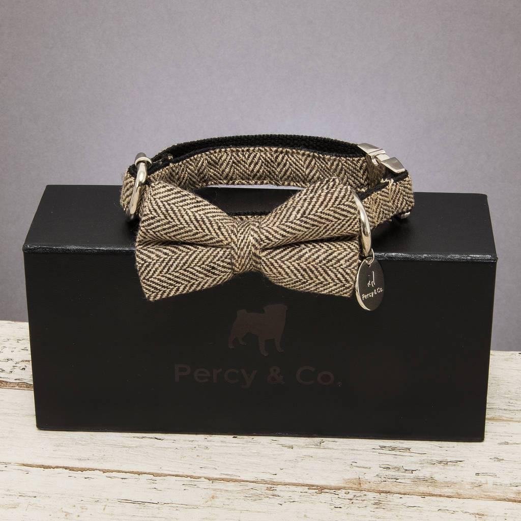 Percy & Co. Dog Bow Tie Collar & Lead Set in Beaufort