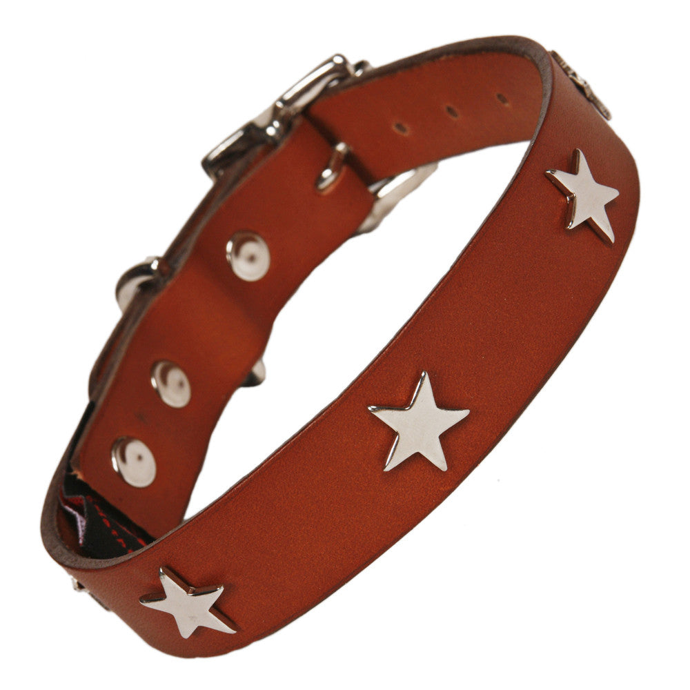 Creature Clothes Silver Star Handmade Tan Leather Dog Collar - PurrfectlyYappy