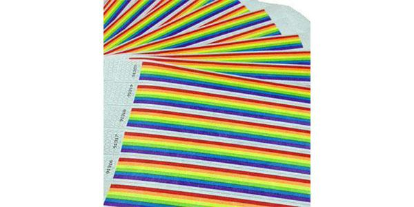 Customizable 1inch Tyvek Paper Wristband Rainbow