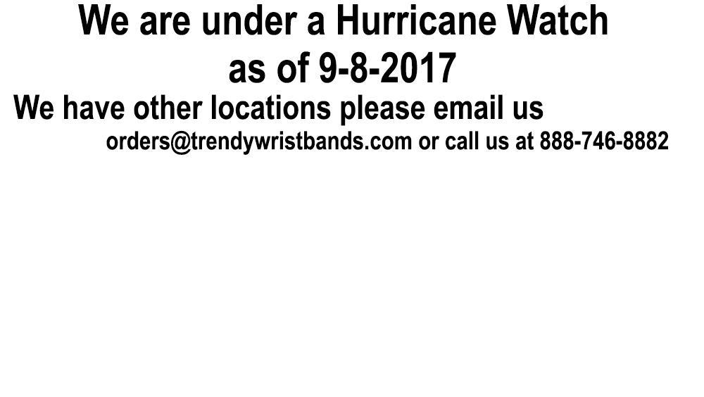 Wristbands For Parks