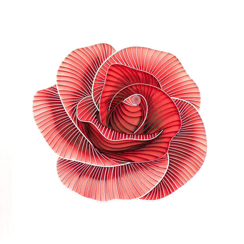 Quilled Red Rose Art