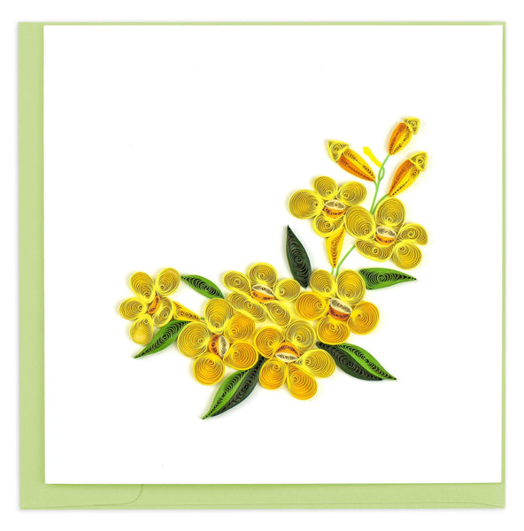 Bunches of rounded yellow flowers with green leaves.