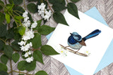 Quilled Fairywren Greeting Card
